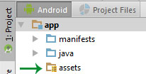Assets Folder Created in App Android Studio